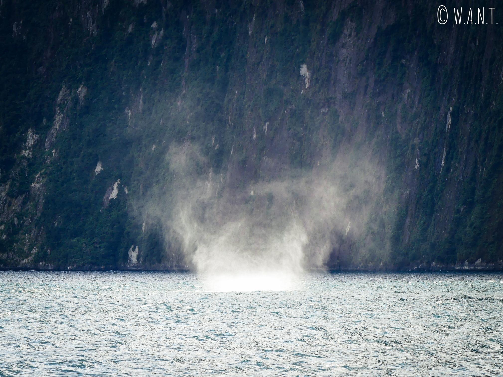 Tourbillon d'eau sur la mer de Tasman formé par le vent en Nouvelle-Zélande