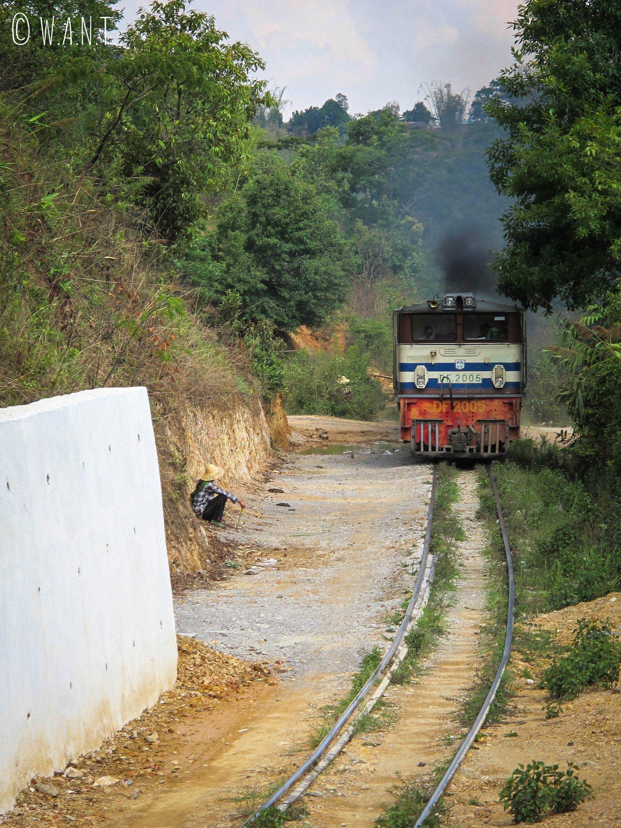 Passage d'un train sur la voie ferrée aux abords de Kalaw au Myanmar