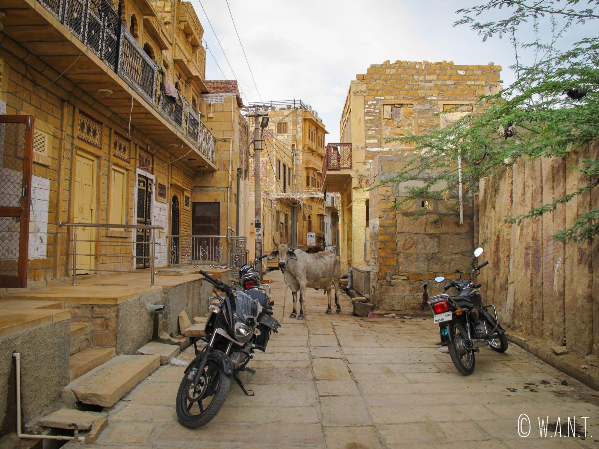 Rue typique hors de l'enceinte du fort de Jaisalmer