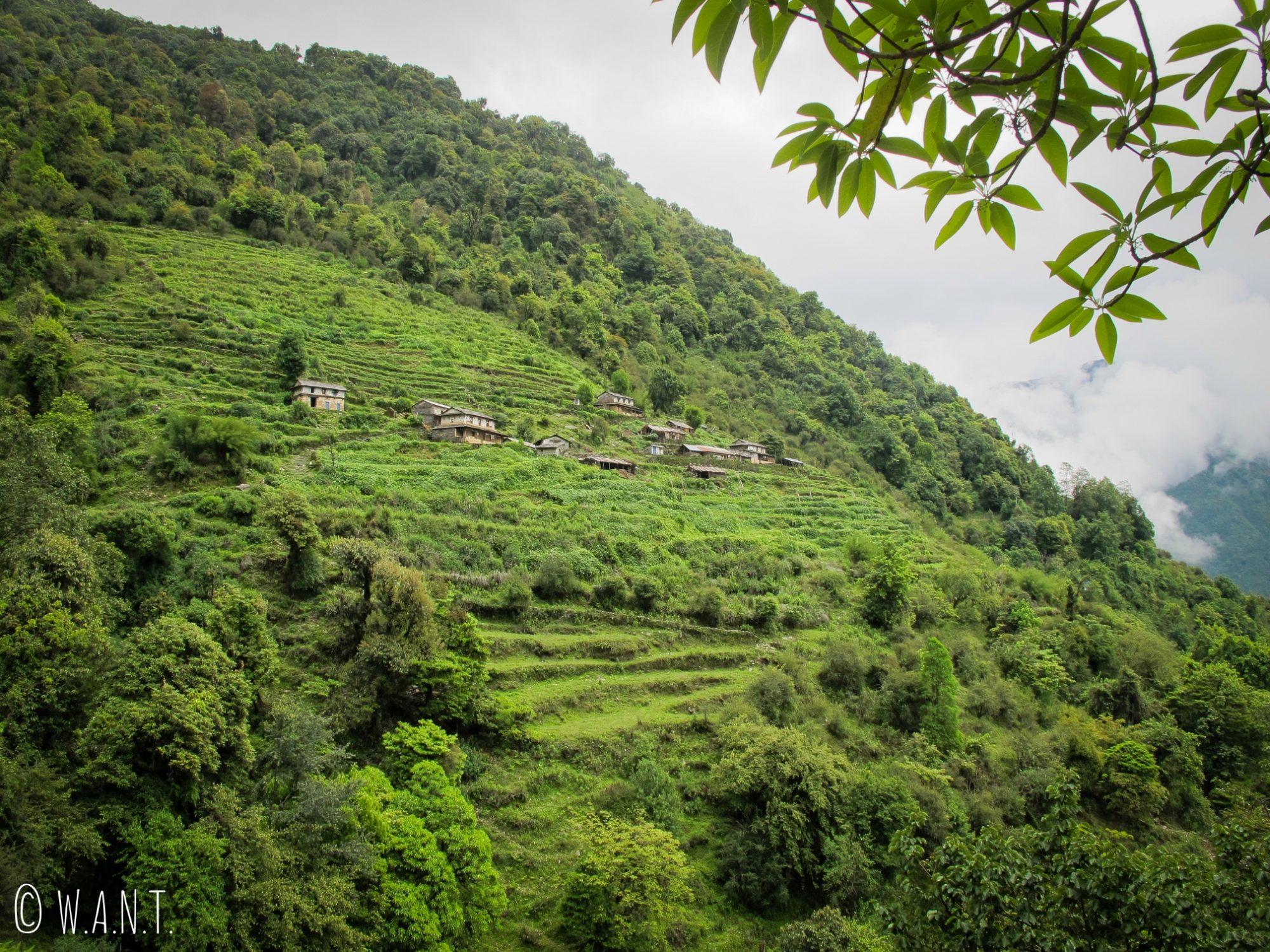 La pluie ne va pas tarder à arriver mais ceci est le dernier village avant d'atteindre Chhomrong