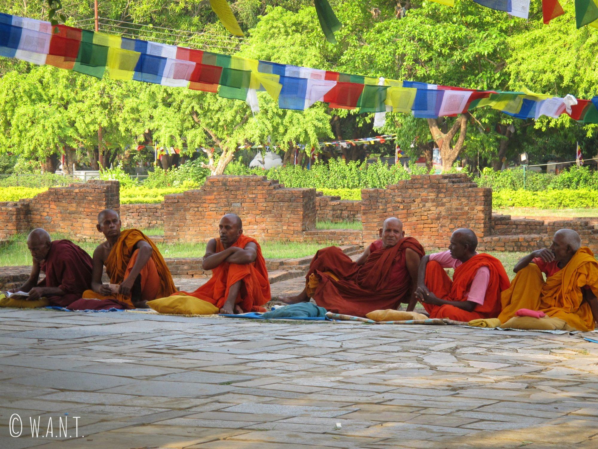 Les moines se regroupent autour du Bodhi Tree à Lumbini
