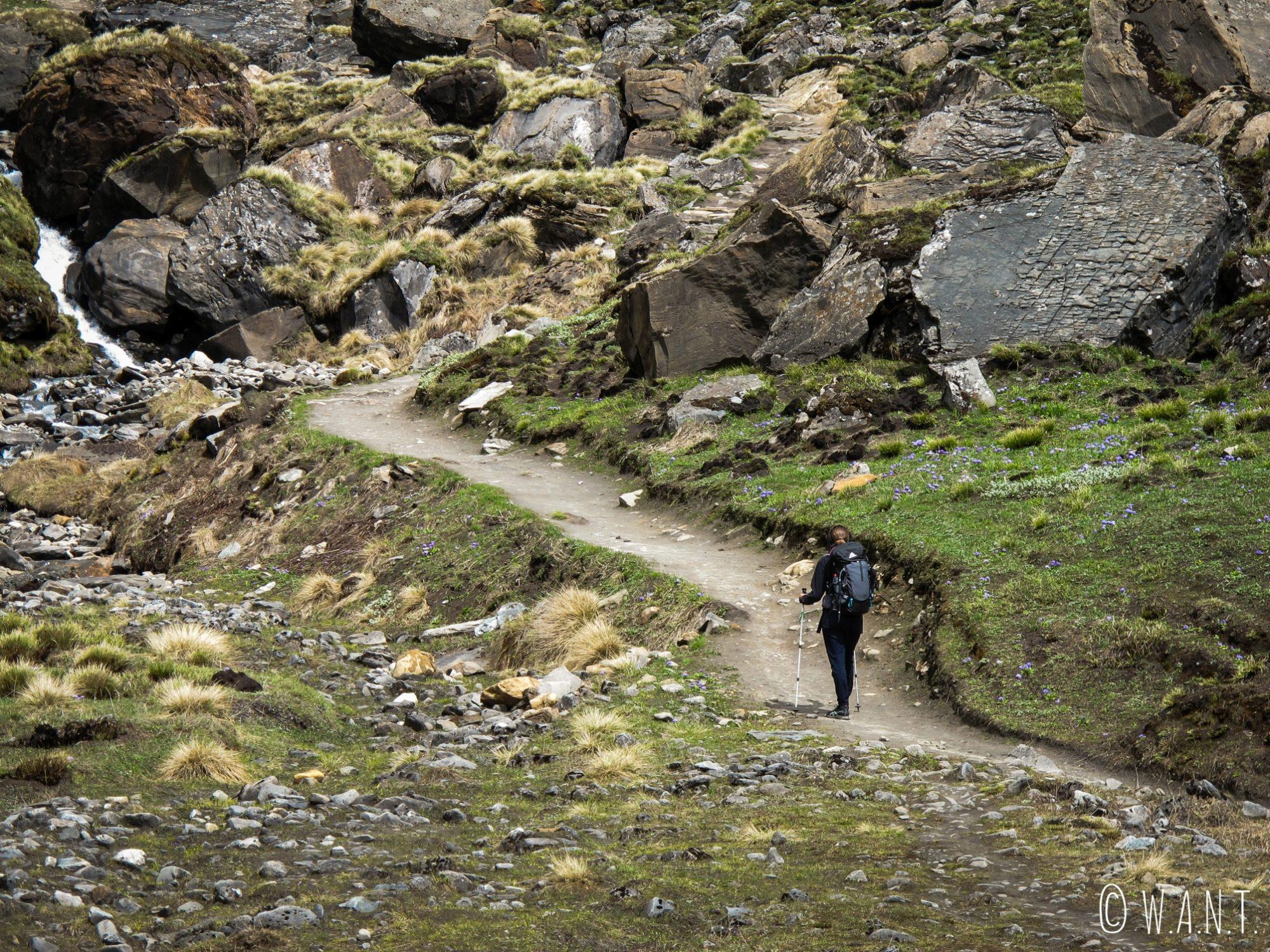 Marion sur les chemins rocailleux de l'Annapurna