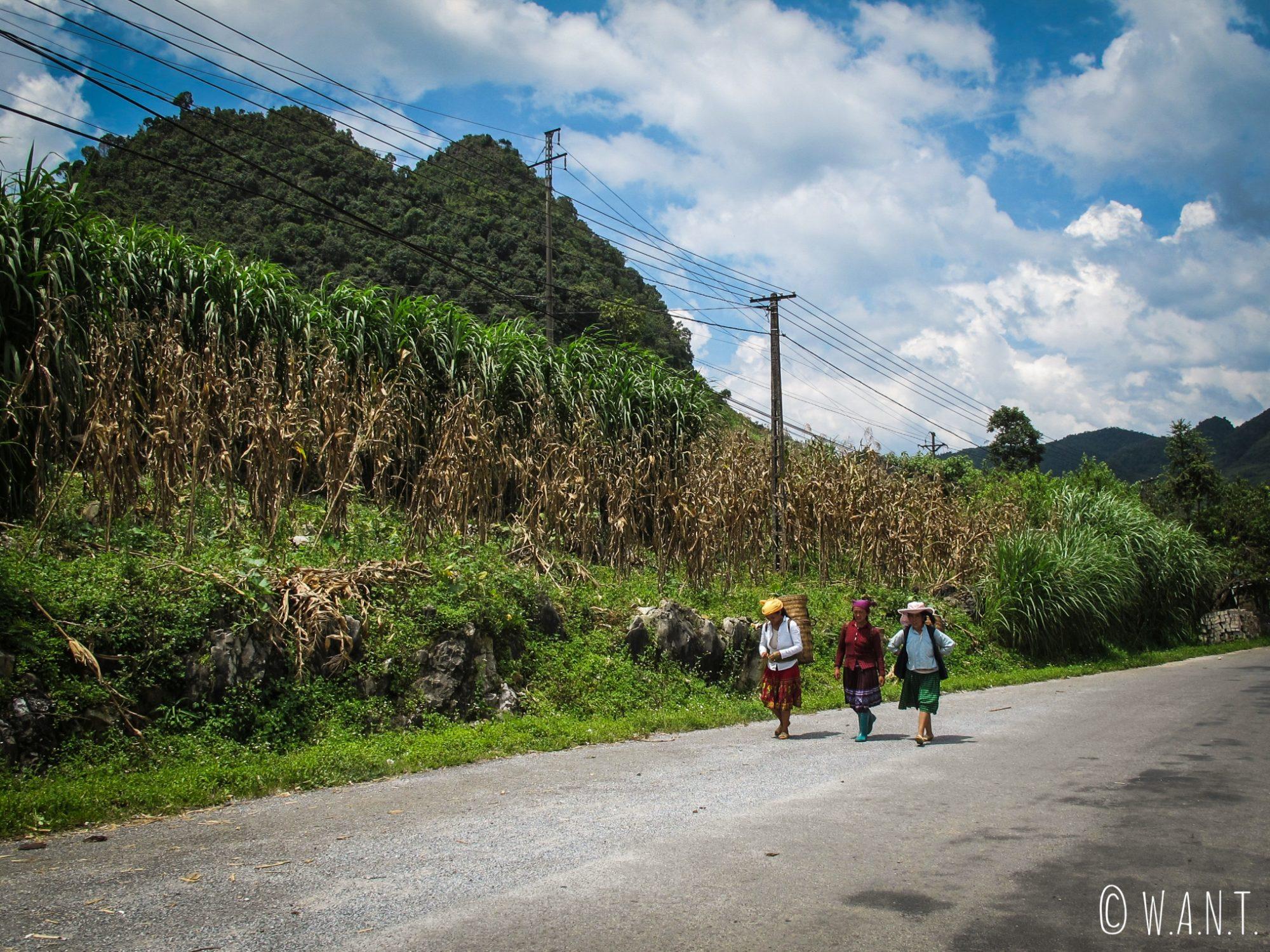 Femmes sur le bord de la route en quittant Meo Vac