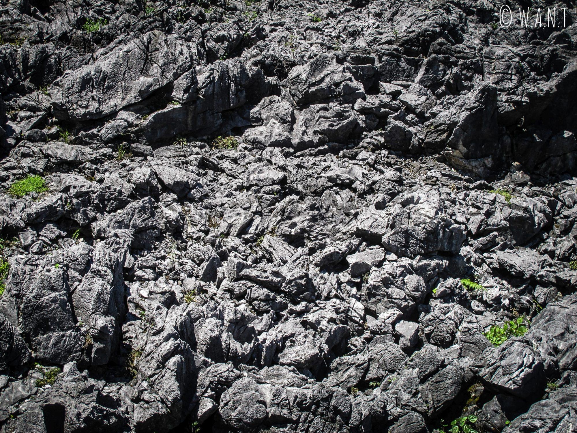 Gros plan sur la roche noire entre Dong Van et Sa Phinh