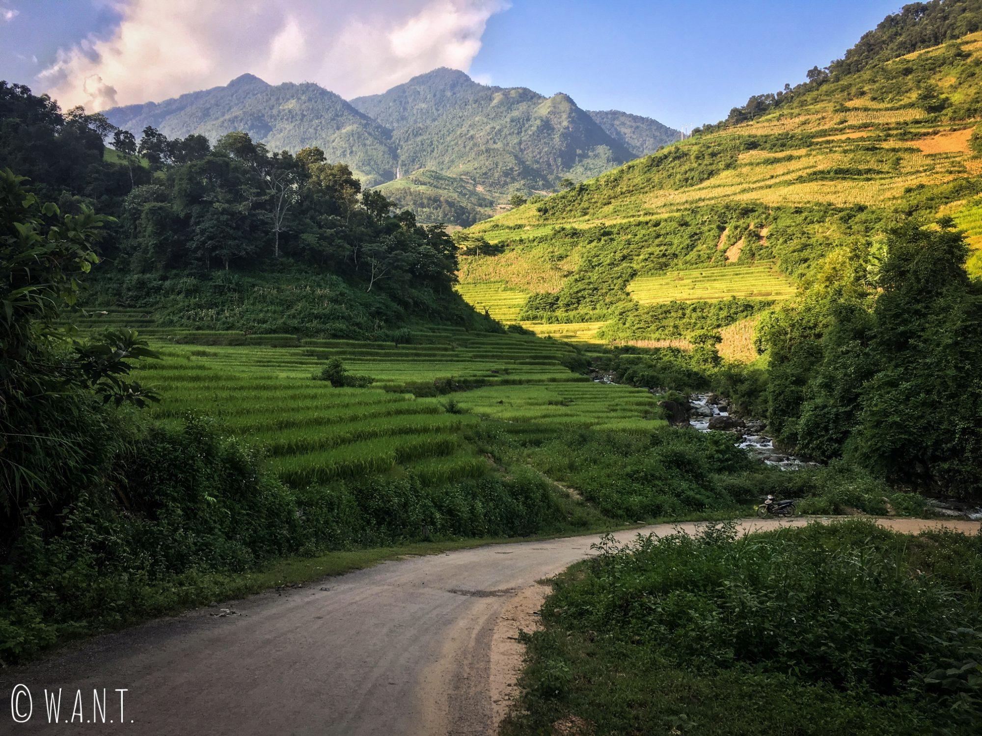 Rizières en terrasses à la sortie du village de Nam Ban