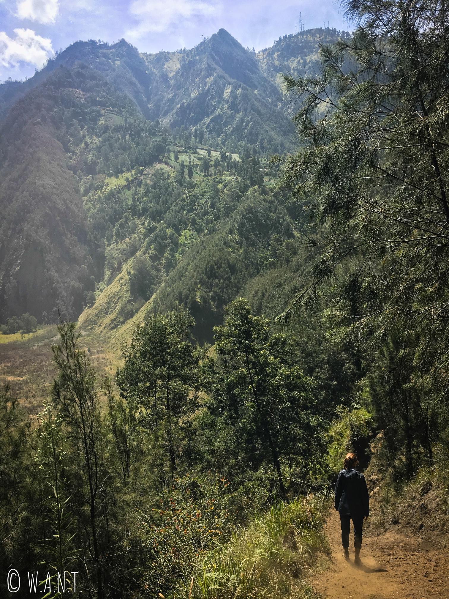 Marion empruntant le chemin des poireaux, gratuit, afin de rejoindre la caldeira du Bromo