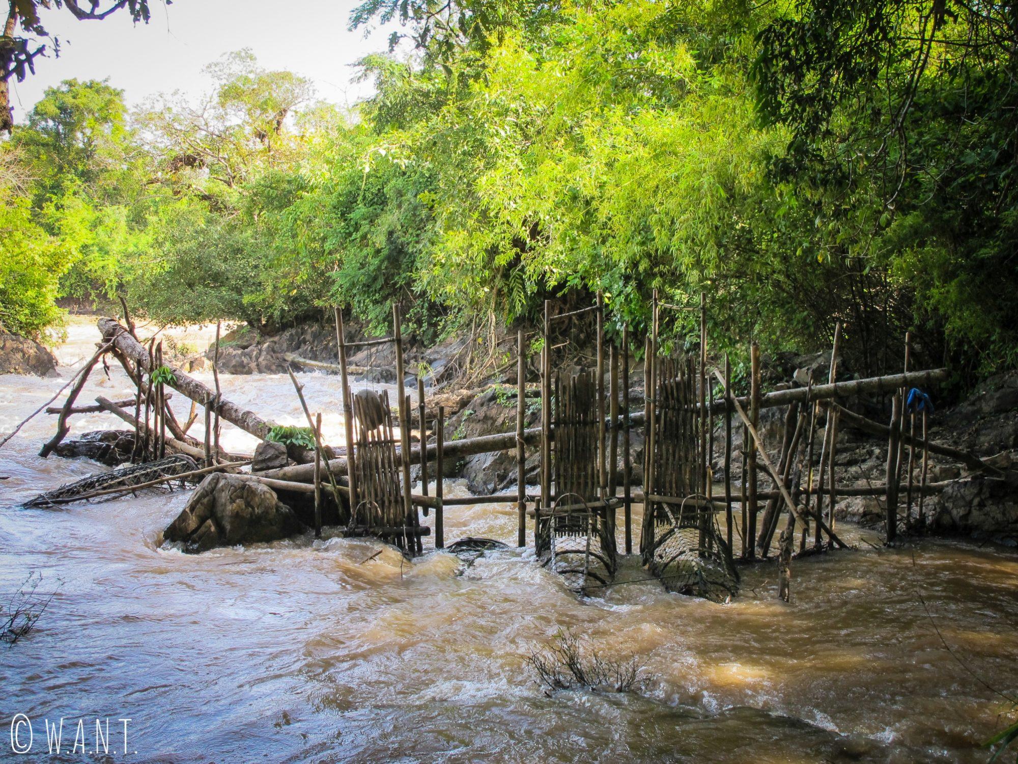 Nacelles pour la pêche sur l'île de Don Khon