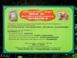 Instructions au Semenggoh Nature Reserve de Kuching