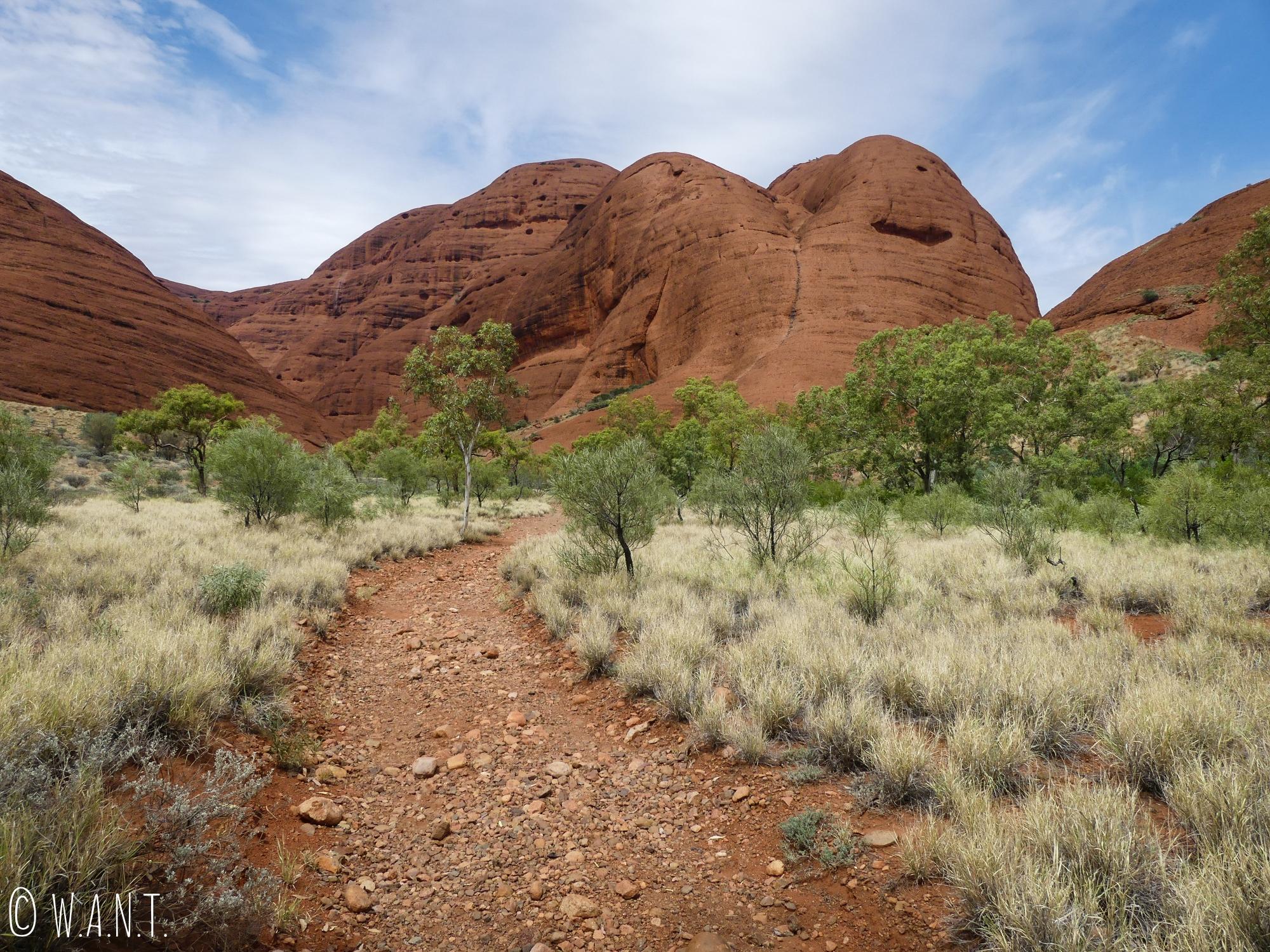 La randonnée Valley of the Winds Walk du parc national Uluru-Kata Tjuta nous fait traverser à travers les dômes du Kata Tjuta