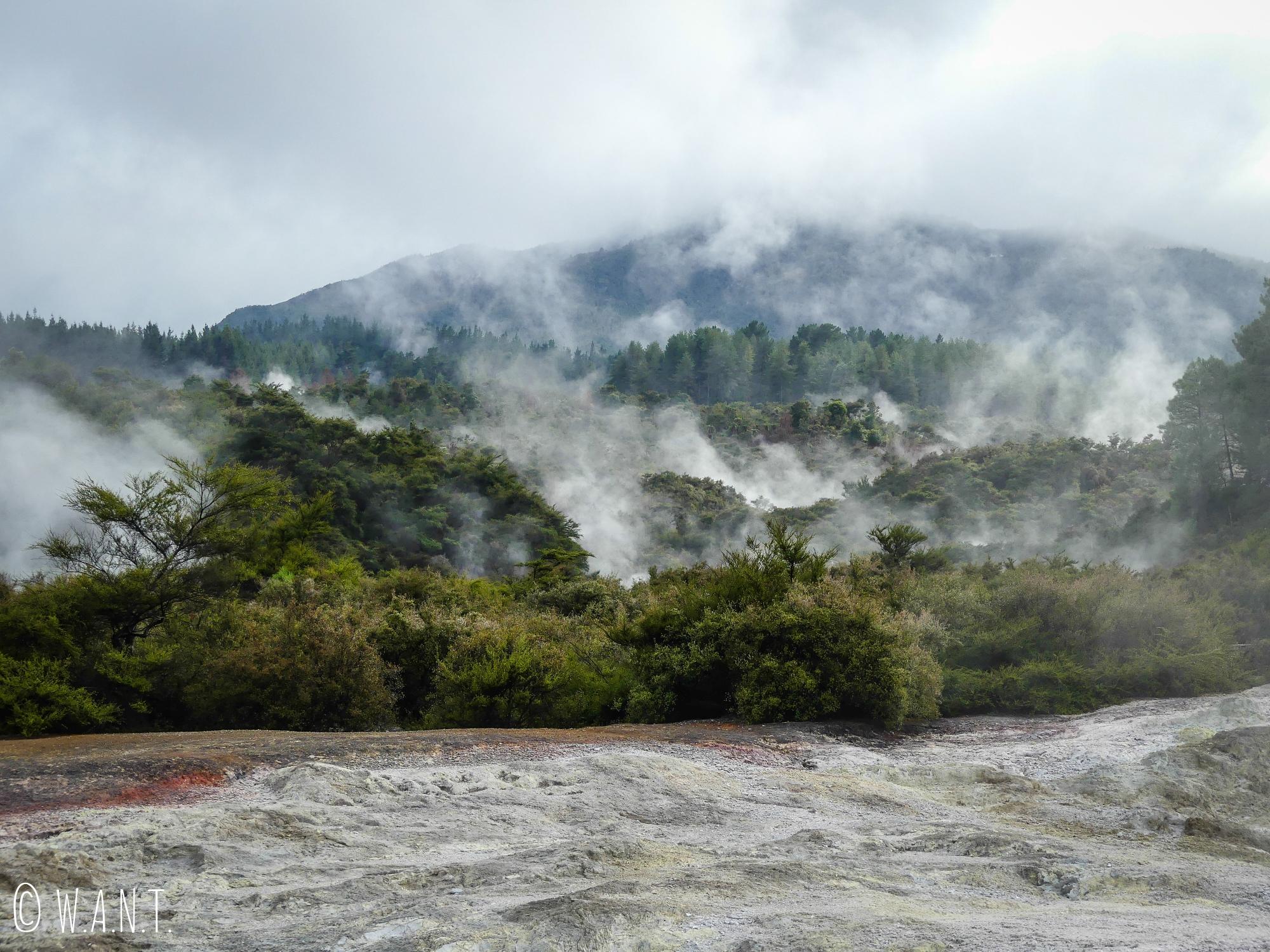 Paysage incroyable du site géothermique et volcanique de Wai-O-Tapu en Nouvelle-Zélande
