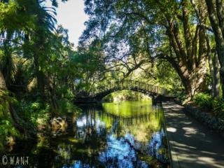 Pont et canards dans le Queen's Gardens de Nelson sur l'île du sud de la Nouvelle-Zélande