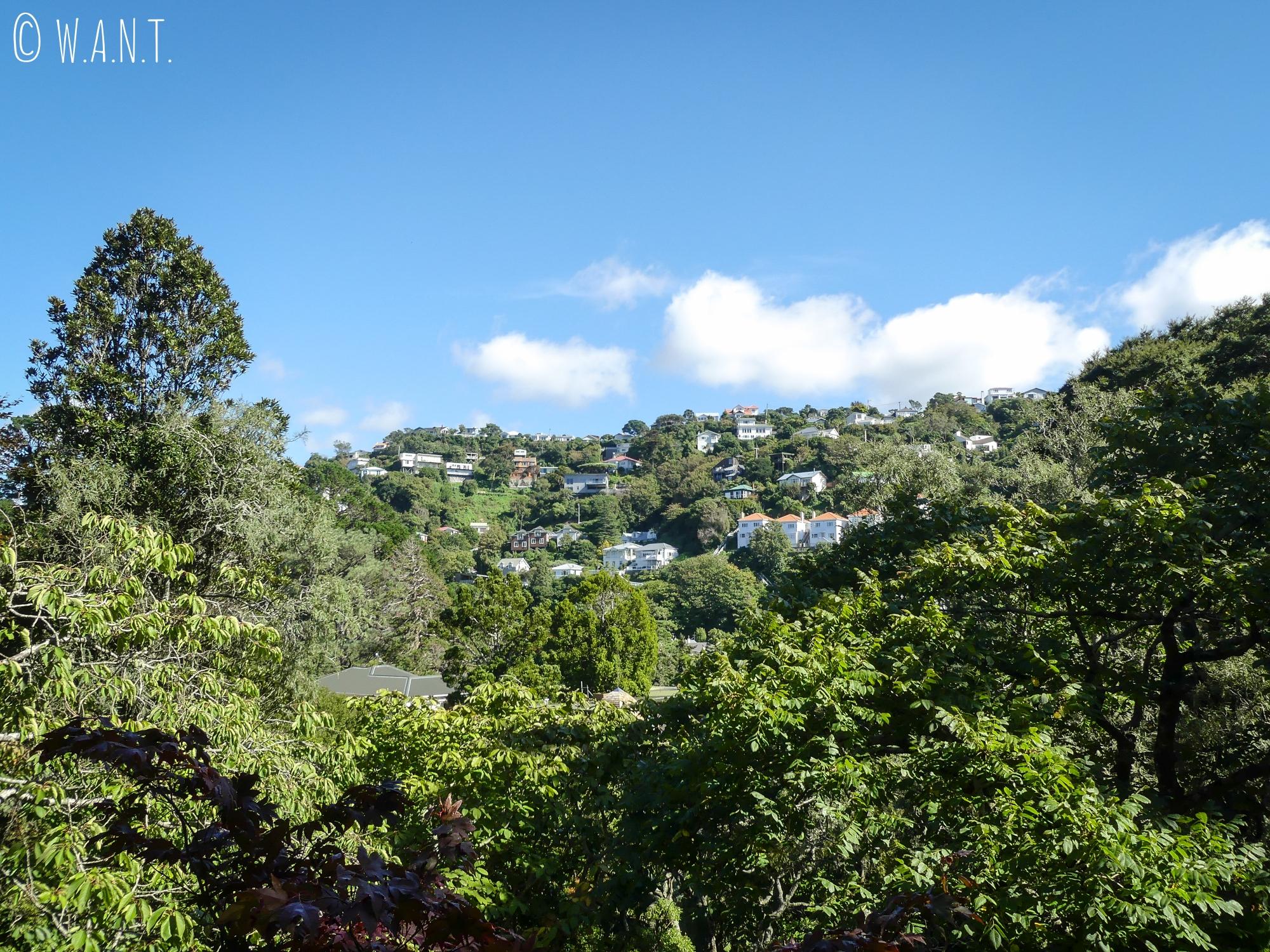 Vue depuis le jardin botanique de Wellington