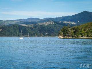 Vue du parc national Abel Tasman en Nouvelle-Zélande, depuis la mer