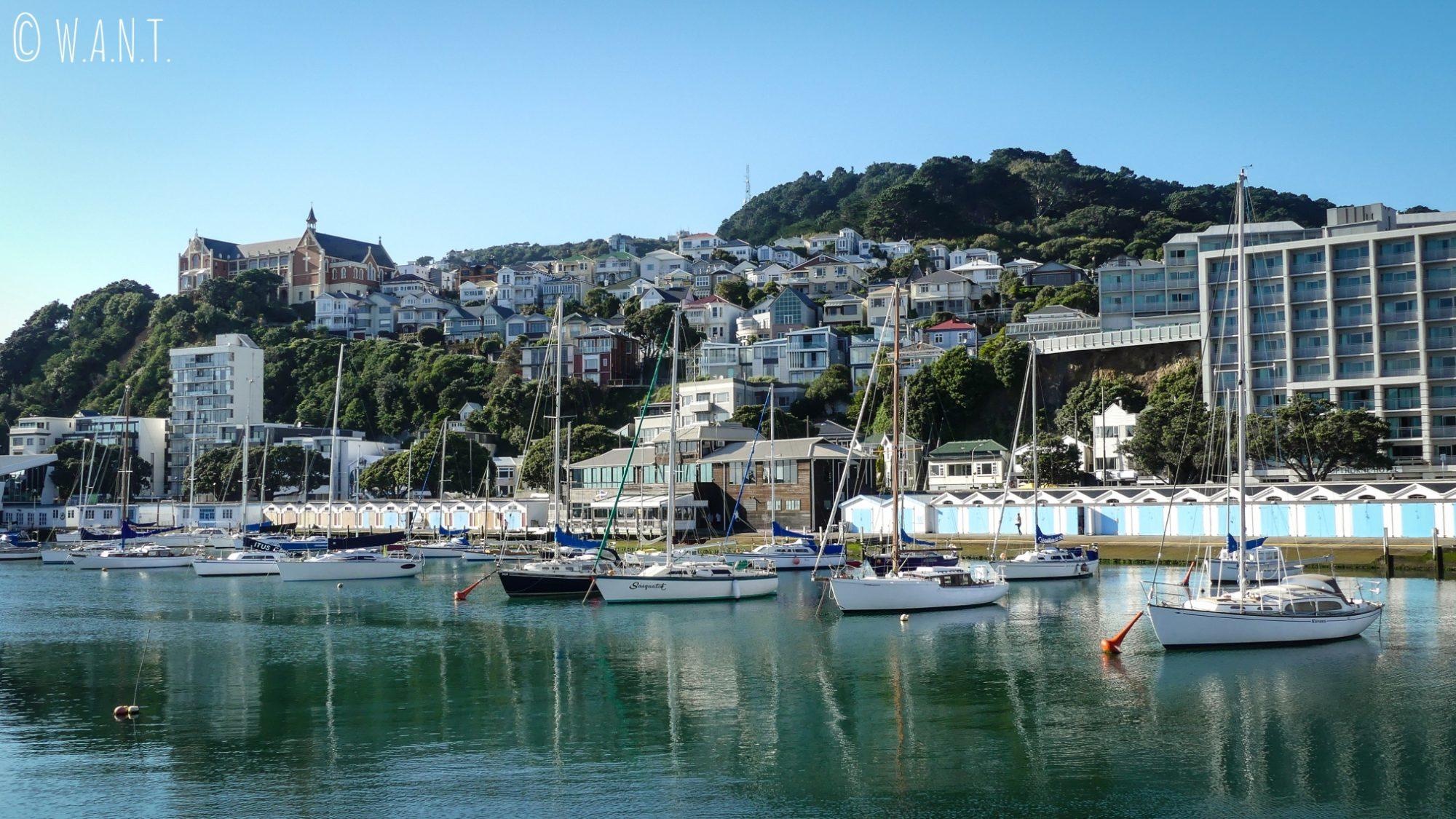 Vue superbe sur le port de plaisance de Wellington