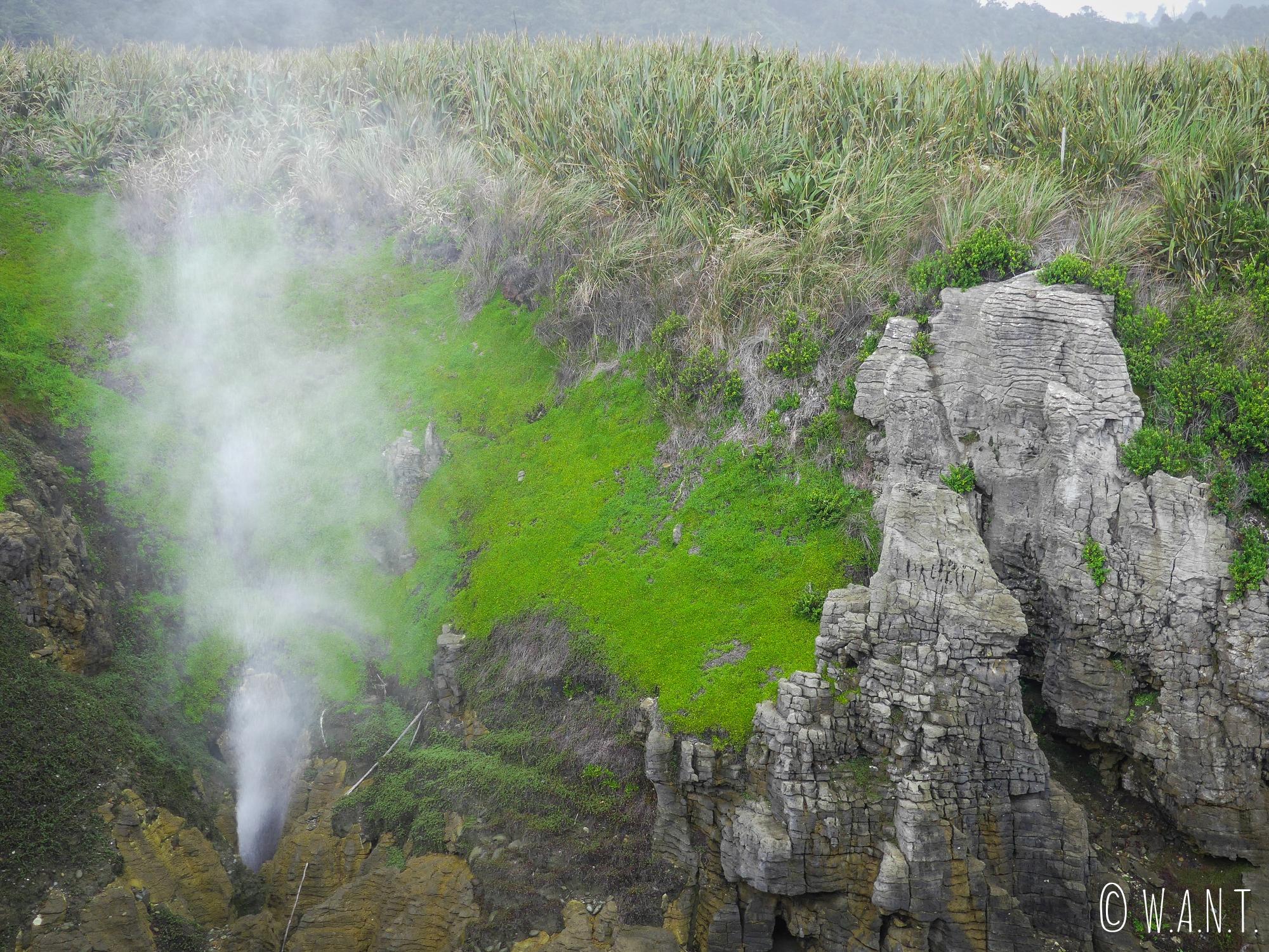 Il est possible d'admirer des blowholes au Pancake Rocks en Nouvelle-Zélande