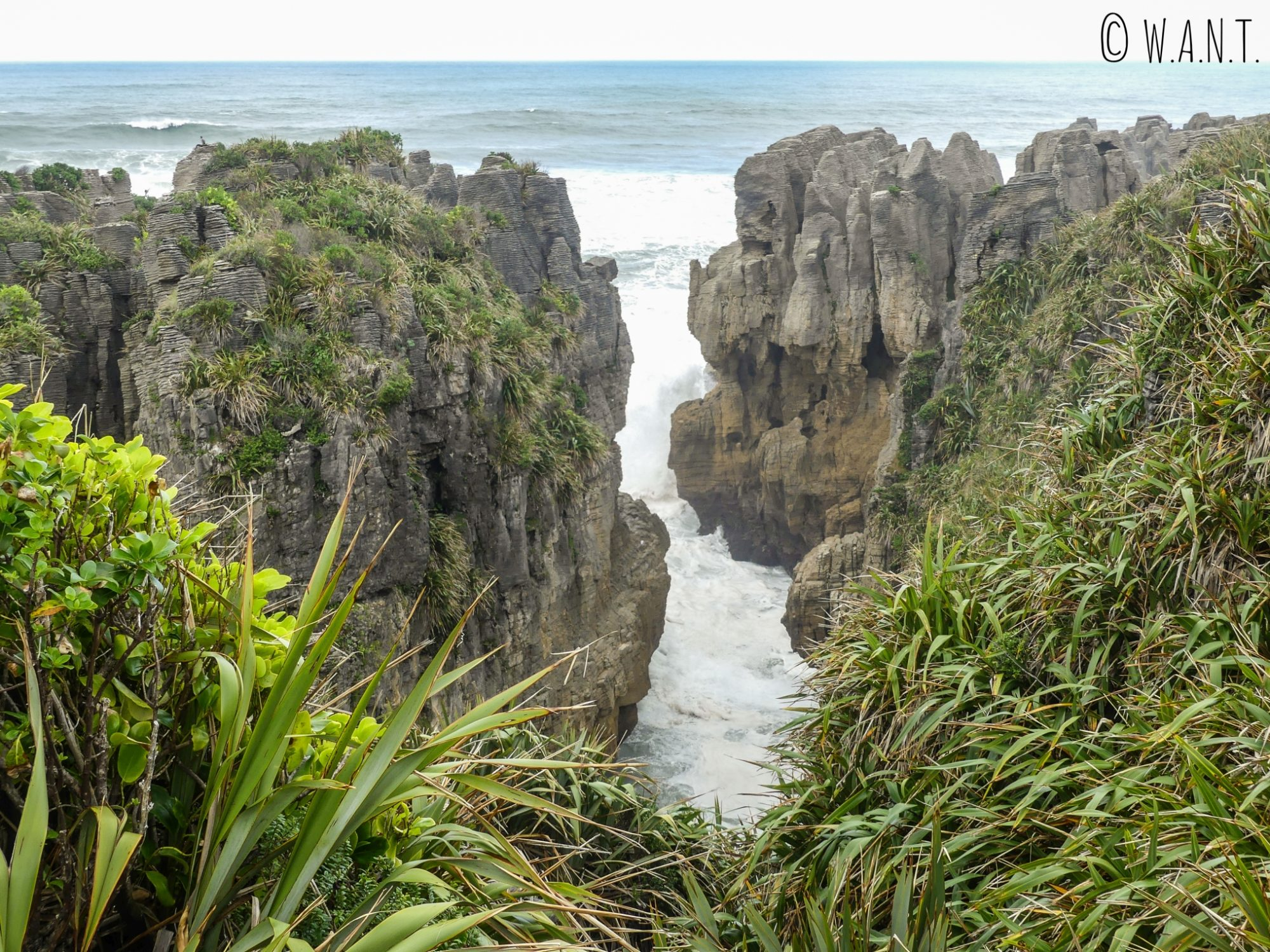 La mer s'engouffre dans les Pancake Rocks sur l'île du sud de la Nouvelle-Zélande