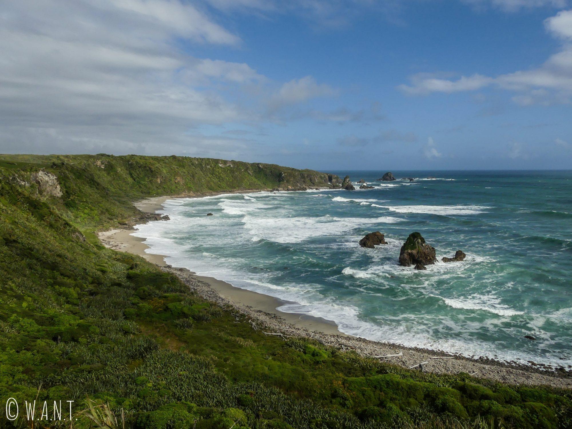 La randonnée du Cape Foulwind nous fait longer la falaise en Nouvelle-Zélande