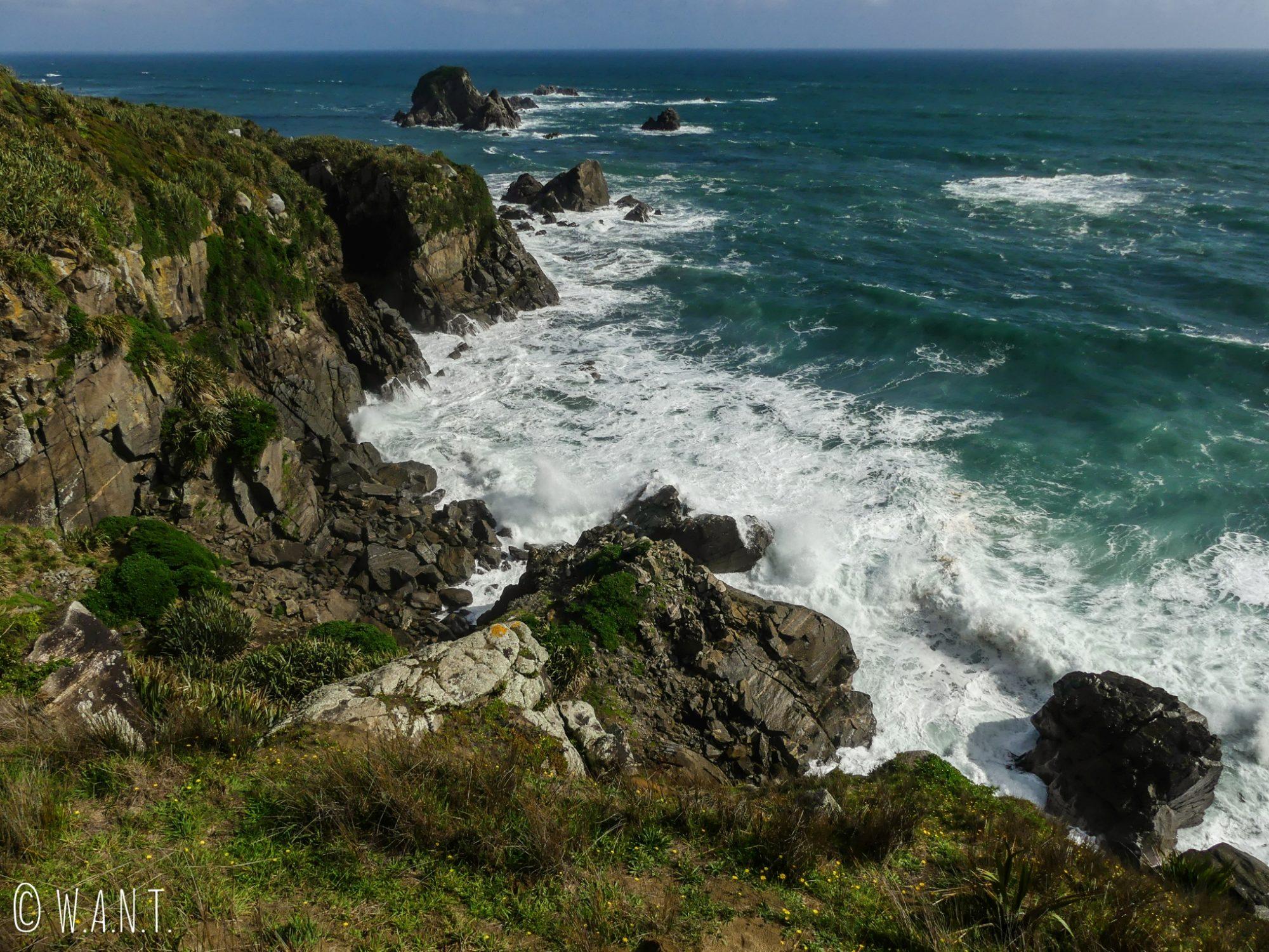 Vue sur la mer depuis la randonnée du Cape Foulwind en Nouvelle-Zélande
