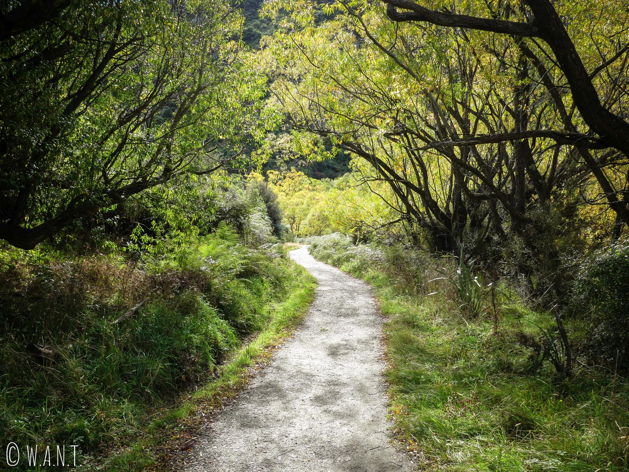 Sentier menant à la randonnée Diamond Lake près de Wanaka en Nouvelle-Zélande