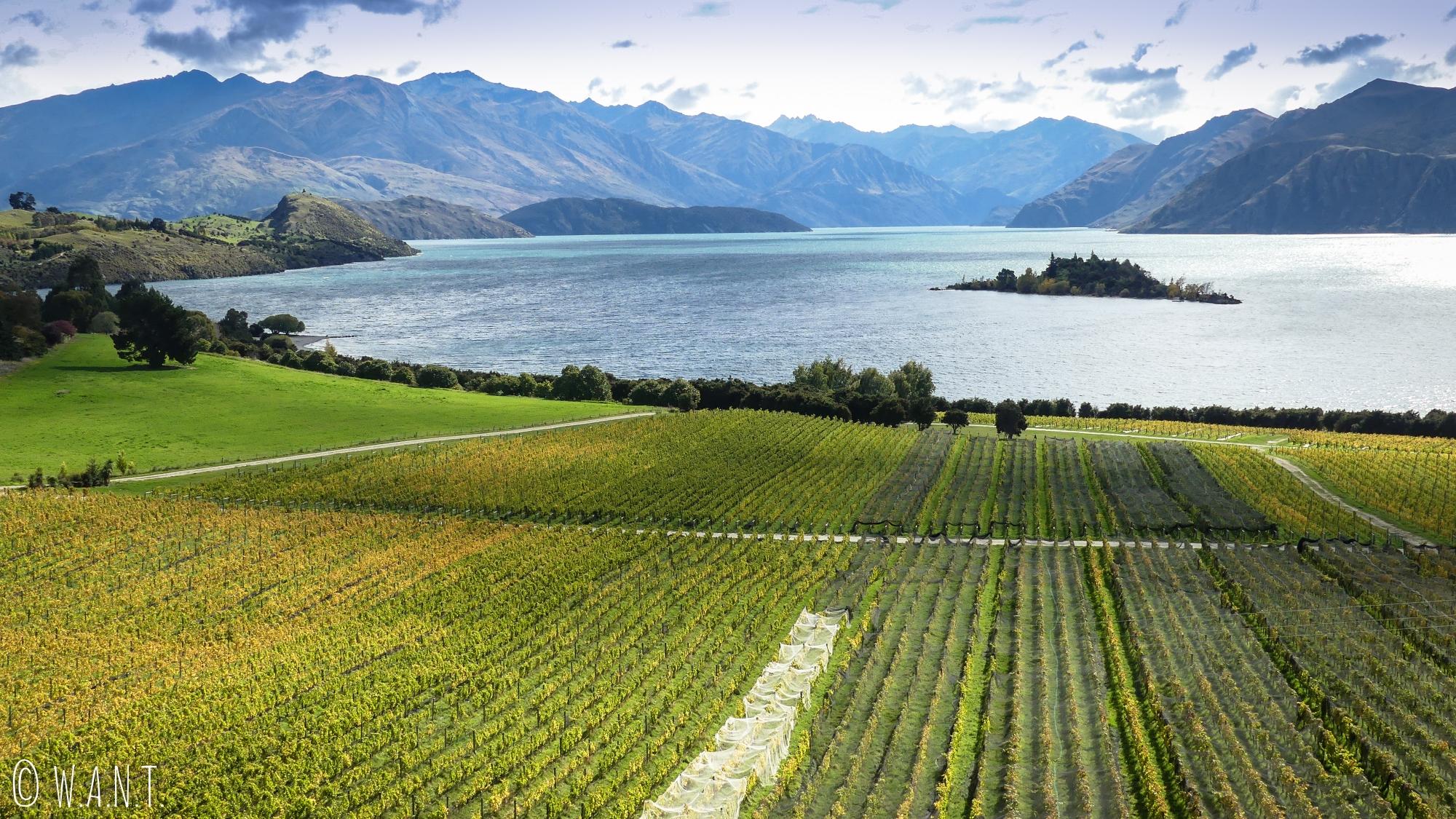 Vue incroyable sur le lac Wanaka depuis le domaine Rippon en Nouvelle-Zélande