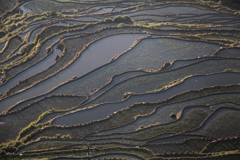 Yuang Yang, Chine, octobre 2017