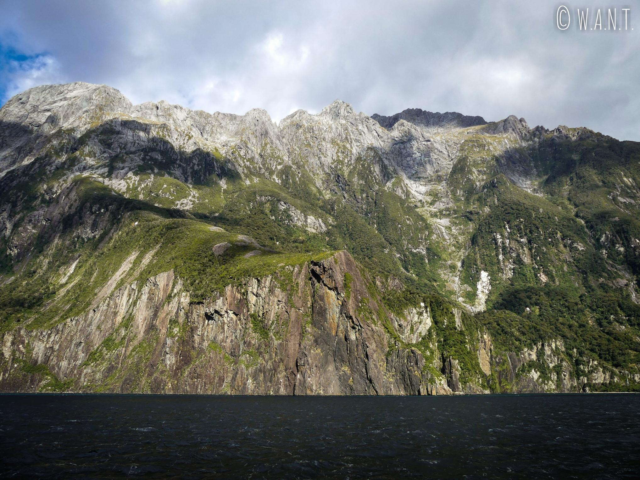 Les falaises plongent dans l'eau du Milford Sound en Nouvelle-Zélande