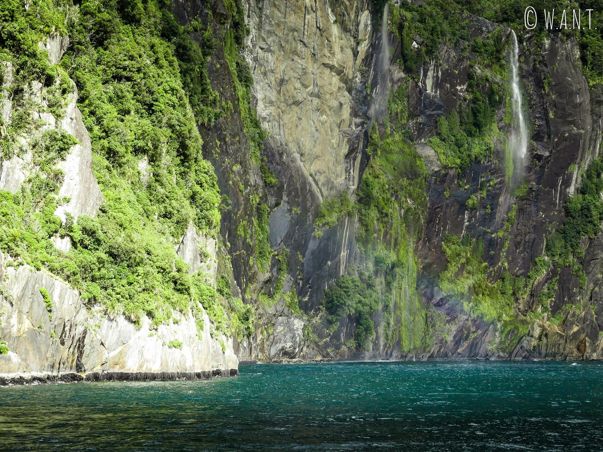 Nous naviguons auprès des falaises sur le Milford Sound en Nouvelle-Zélande