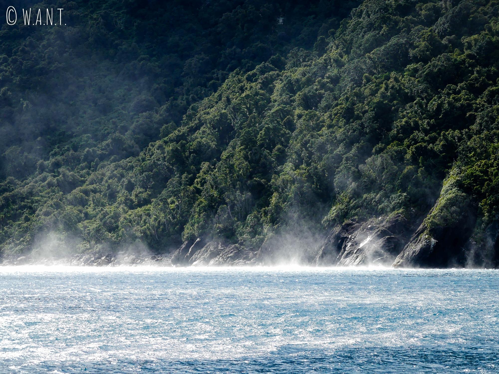 Nous observons des tourbillons d'eau sur la mer de Tasman en Nouvelle-Zélande