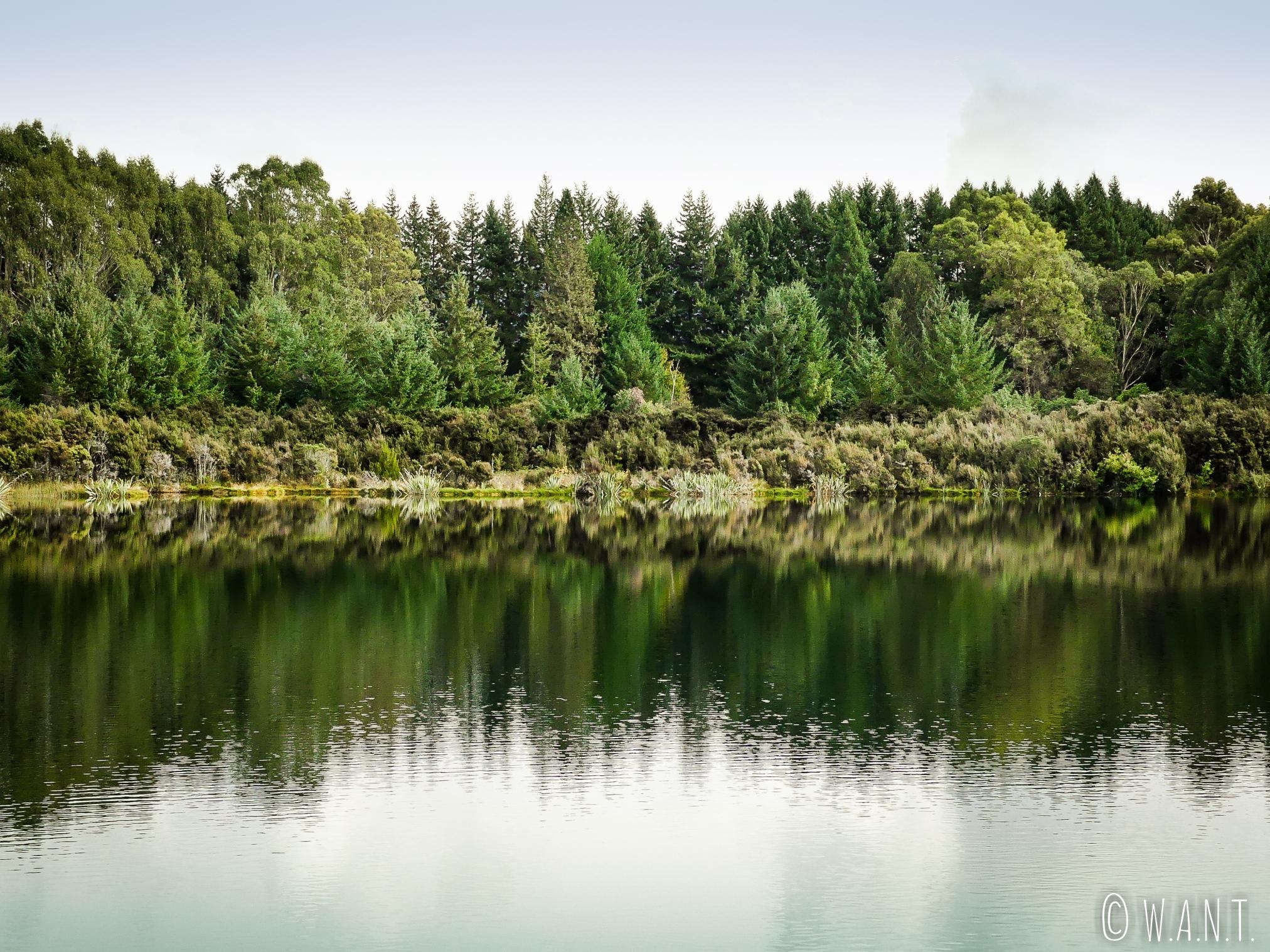 Promenade autour du lac Henry à Te Anau en Nouvelle-Zélande