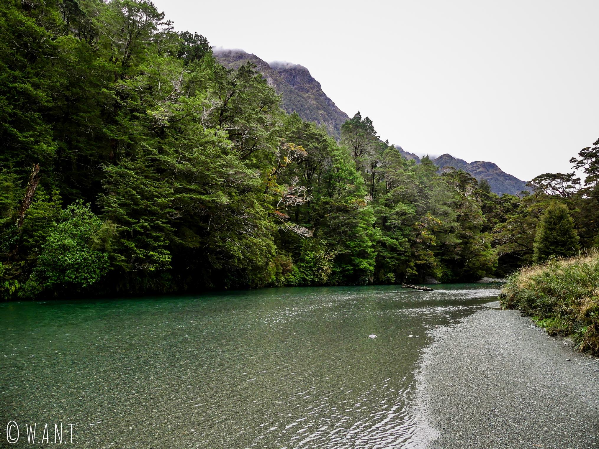Promenade le long de la rivière qui borde le Deer Flat Camping dans le Fiordland National Park de Nouvelle-Zélande
